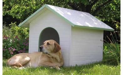Jardin para perros el diseo y la fabricacin de estas - Jardin para perros ...